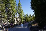 Canyon_120_08022020 - On our visit to Yellowstone in August 2020, we visited Artist Point in the mid-morning, which was busy but noticeably devoid of international tour buses due to COVID-19