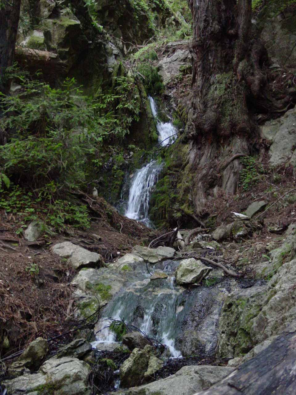 Canyon Falls as seen back in 2003