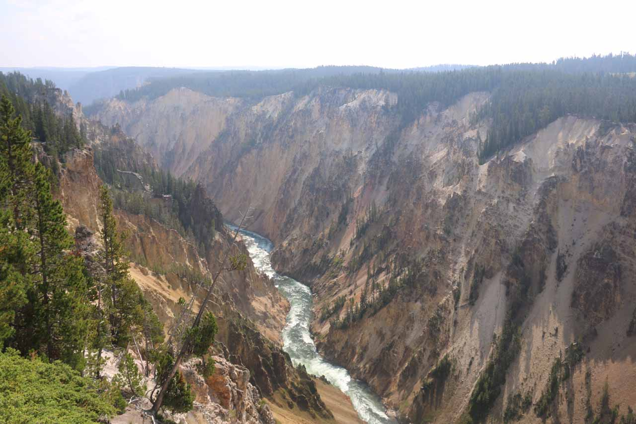 View of the Yellowstone River from the North Rim Trail