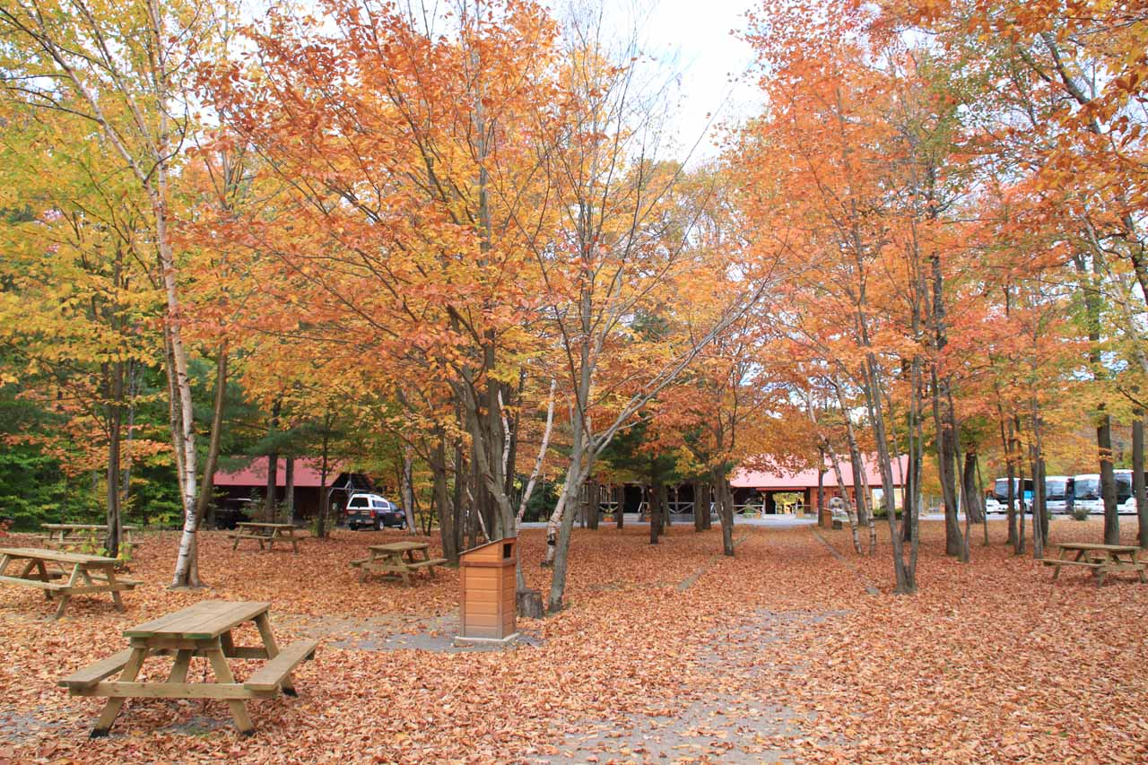 The car park at Canyon Sainte-Anne bathed in Autumn colors