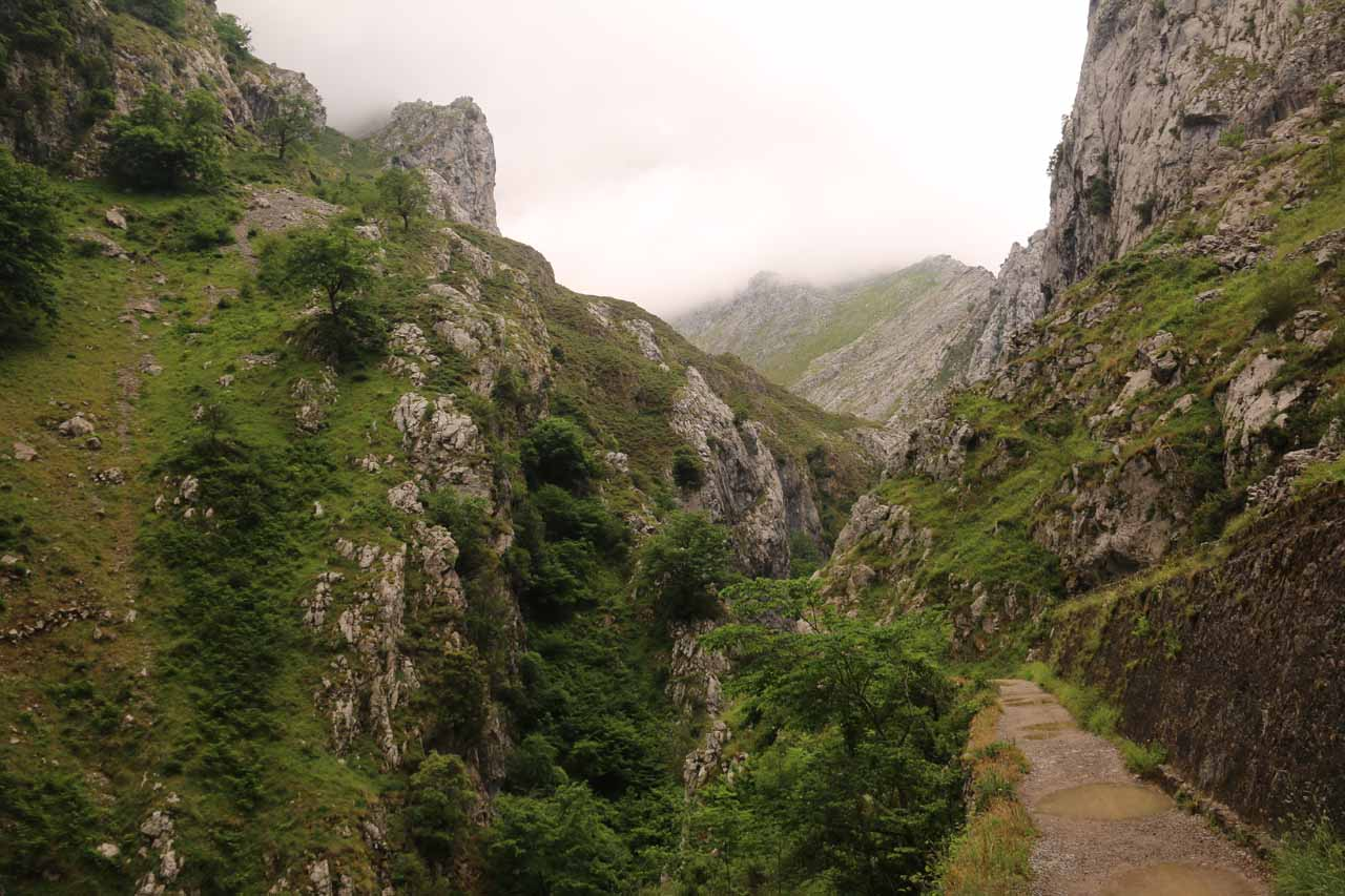 It wasn't long before the trail rose high above the deepening gorge thereby presenting constant exposure to dropoffs