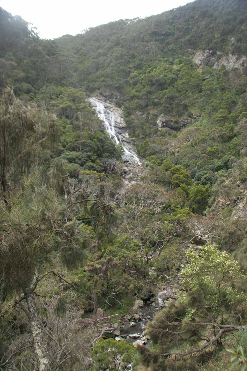 Full context of the Carisbrook Falls and ravine below