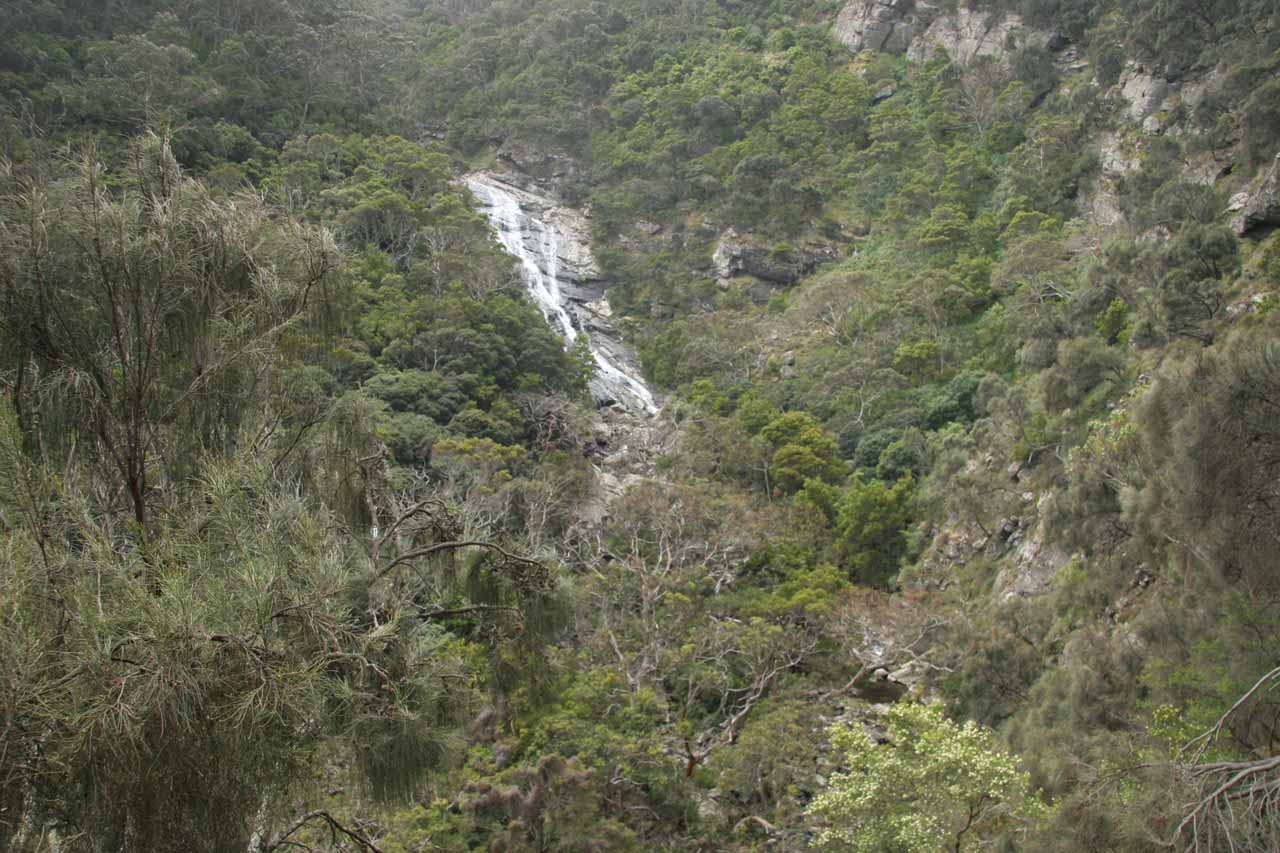 This was what Carisbrook Falls looked like in November 2006