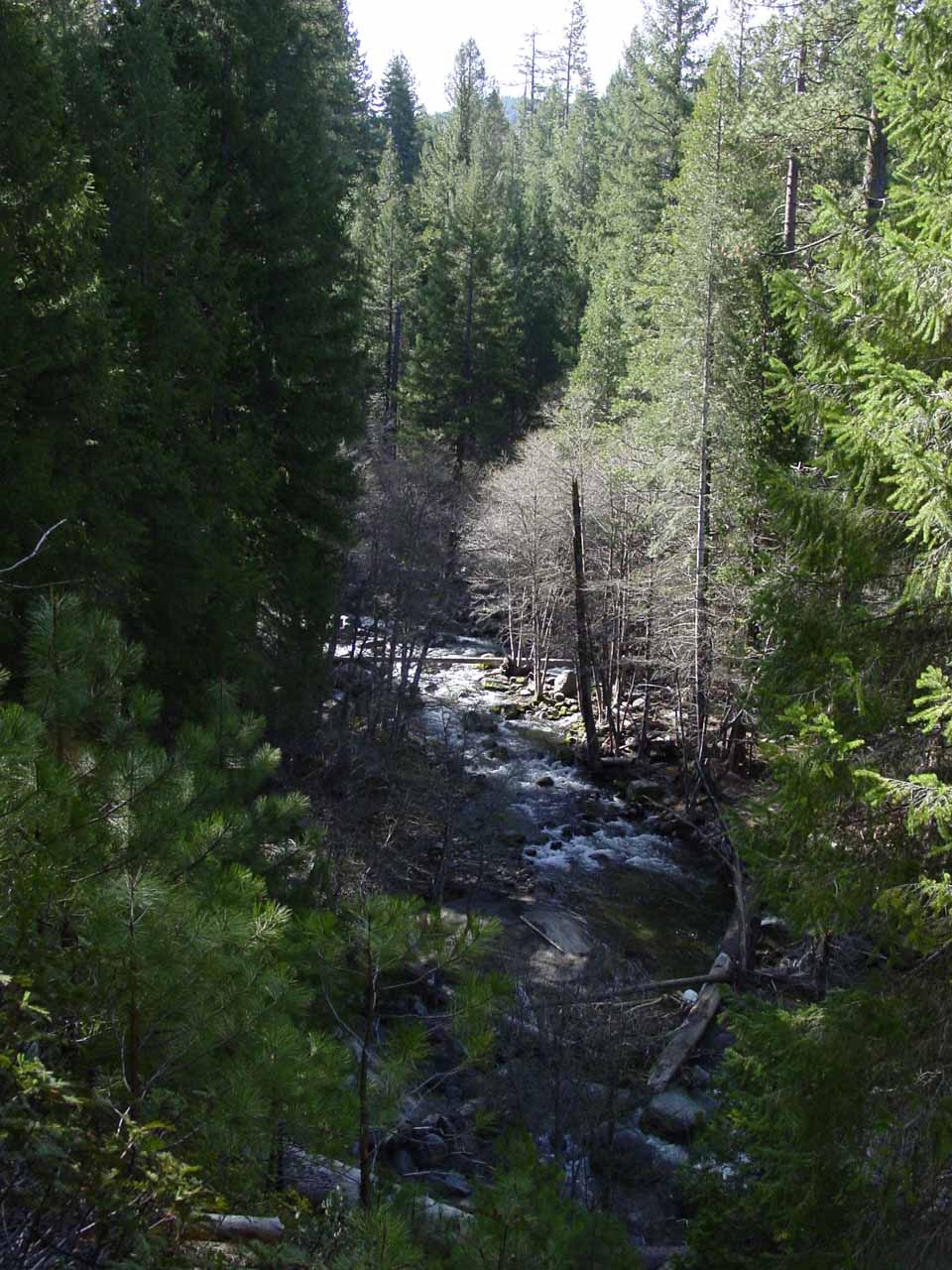 Looking down at the South Fork Tuolumne River in 2004. Notice the difference in the scenery back then compared to 2017 in the preceding photo