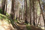 Carlon_Falls_17_009_06172017 - Mom approaching the trail maze marking the return into Yosemite National Park wilderness
