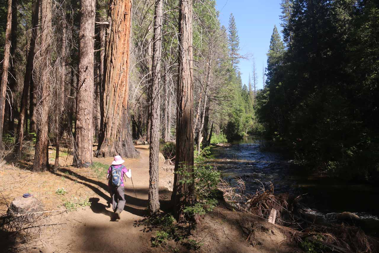 Much of the first mile of the hike followed along the mostly serene South Fork Tuolumne River