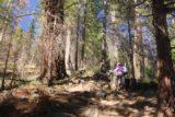Carlon_Falls_17_042_06172017 - Mom continuing to ascend the steep part of the Carlon Falls Trail