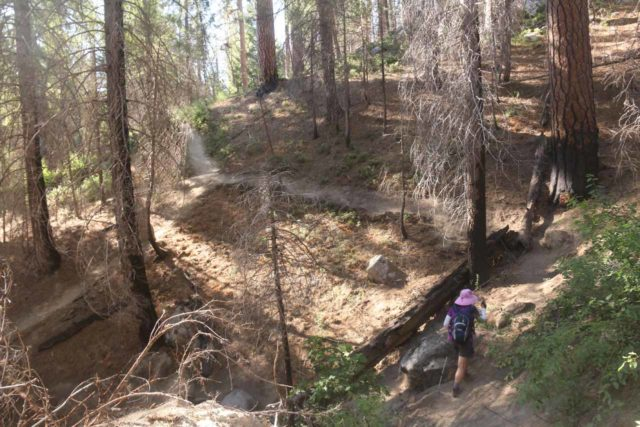 Carlon_Falls_17_099_06172017 - Mom going around one of the eroded sections of the Carlon Falls Trail during our June 2017 visit