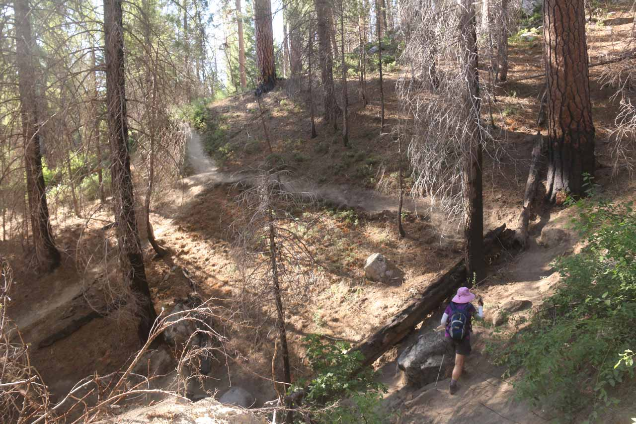 Mom going around the tricky eroded part by the apex of the persistent climbing section of the Carlon Falls Trail