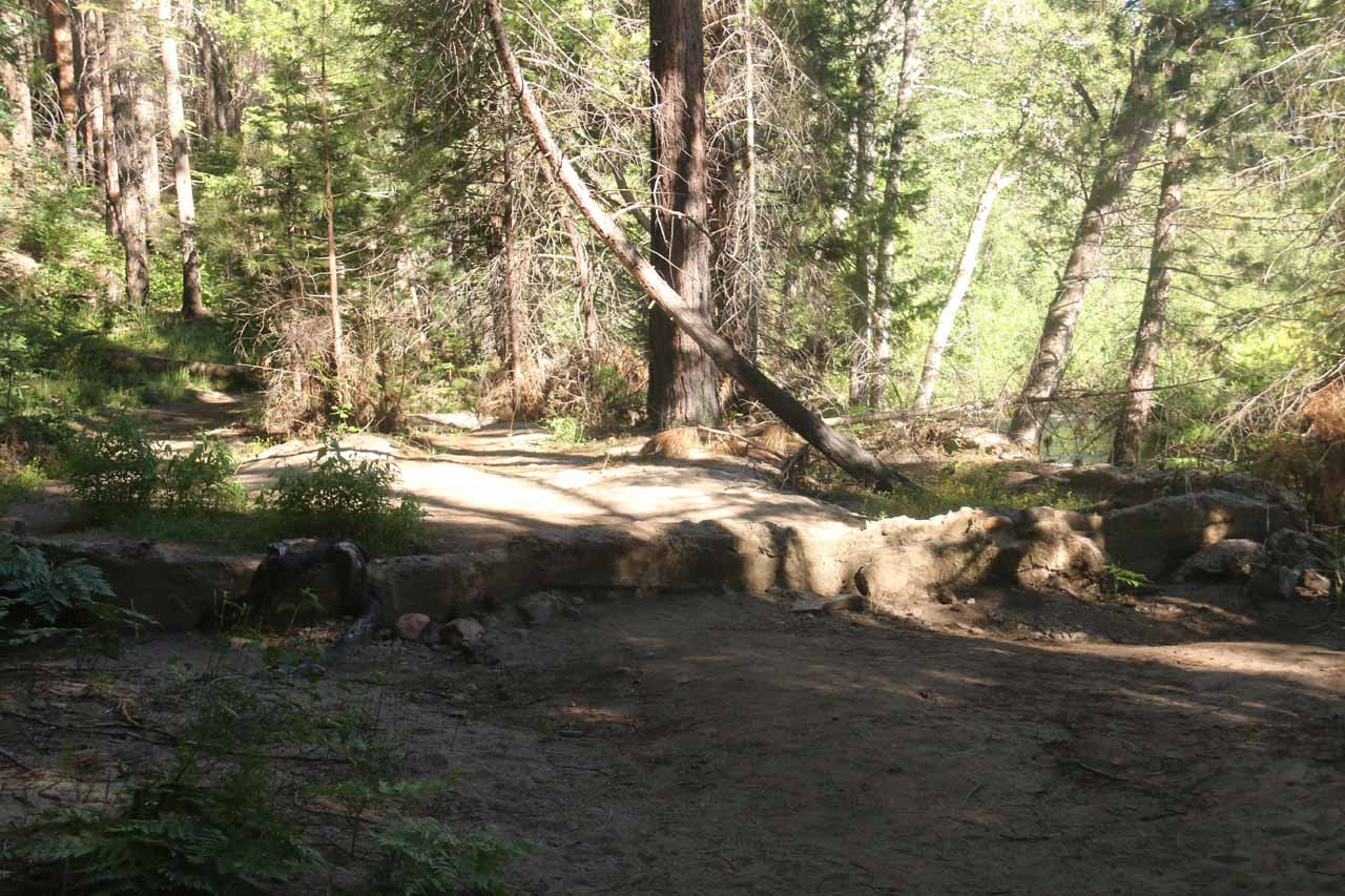 The Carlon Falls Trail went through what appeared to be the remnants of a wall or foundation of a building that was once here