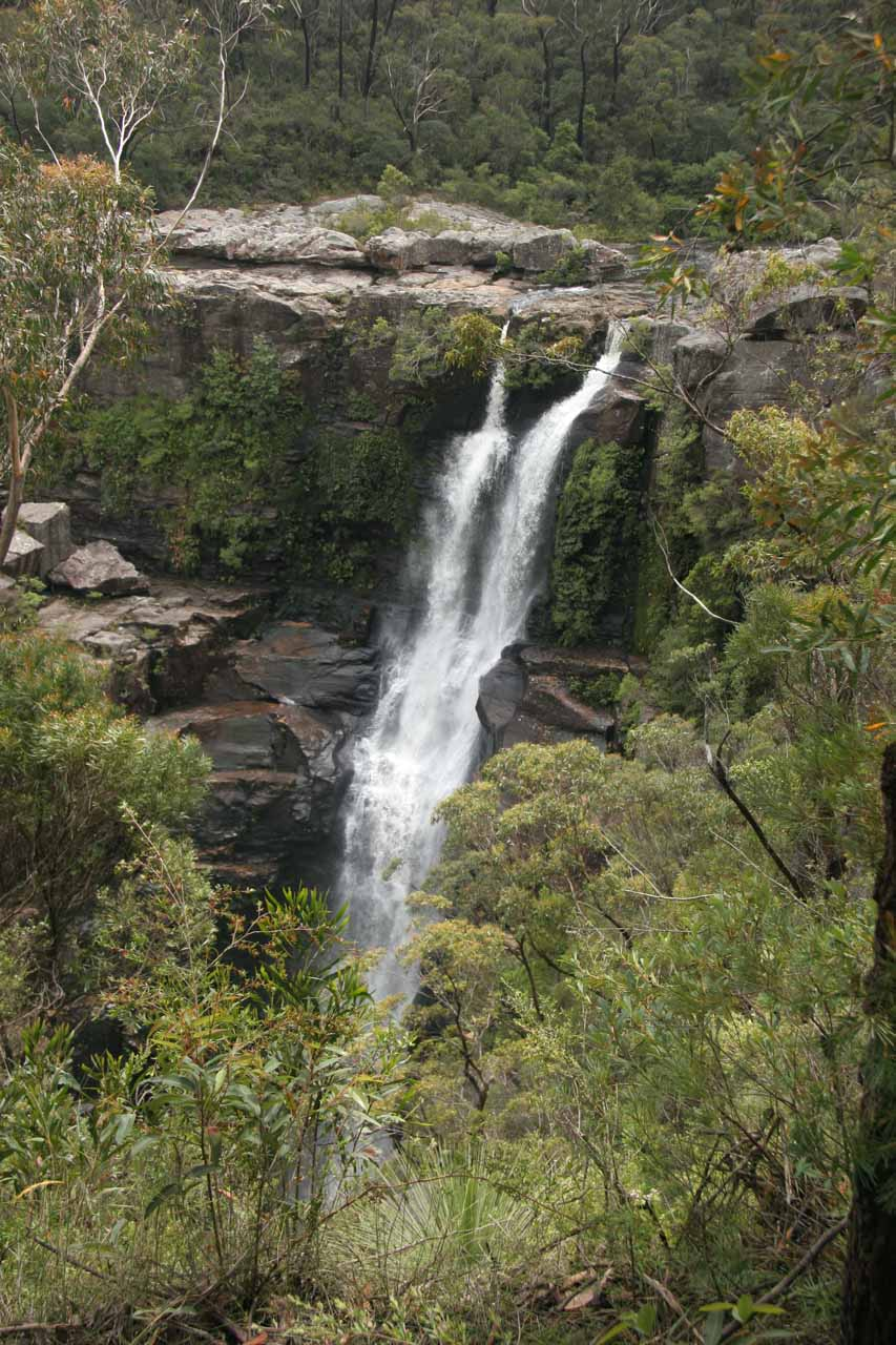 As we went on the loop walk, the views of Carrington Falls became more partial