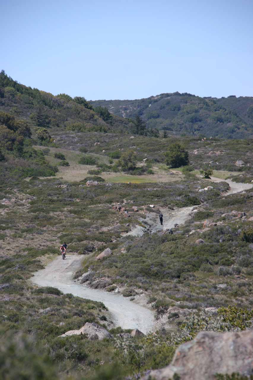 Mountain bikers approaching on the Pine Mountain Road