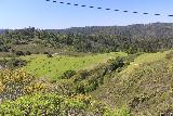 Carson_Falls_039_04212019 - Looking back towards the Bolinas Road from the top of Pine Mountain Road and its junction with Oat Hill Road as I continued to pursue Carson Falls during my April 2019 hike