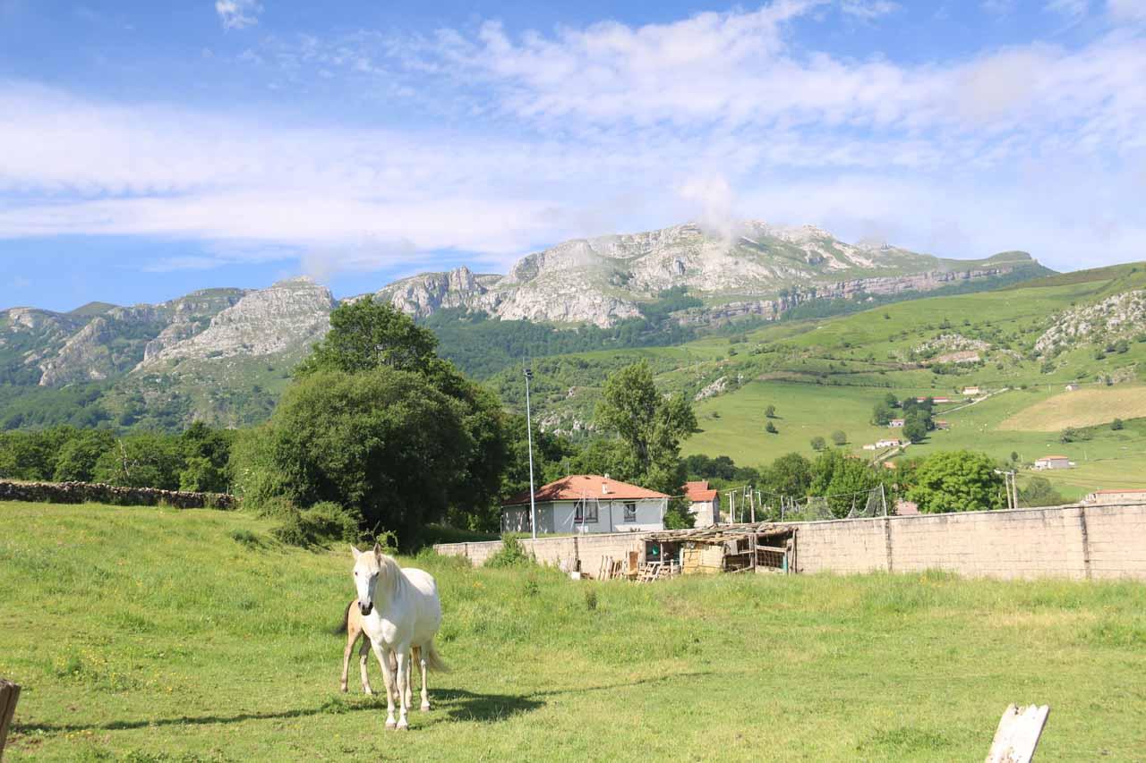 Looking over some pastures towards attractive mountains seen on the way to the Mirador de Cascada La Gandara