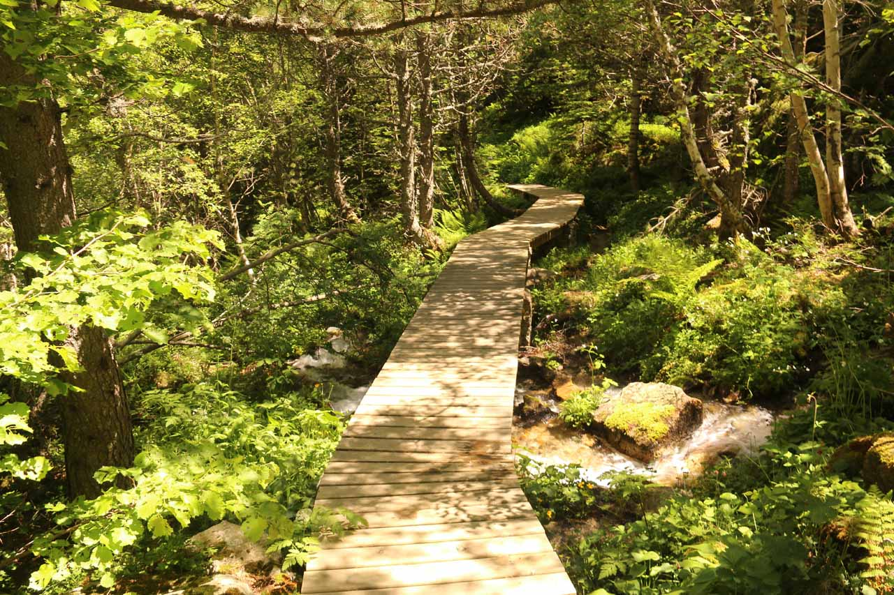 Then the trail followed along this boardwalk where it crossed over a stream and some marshy areas