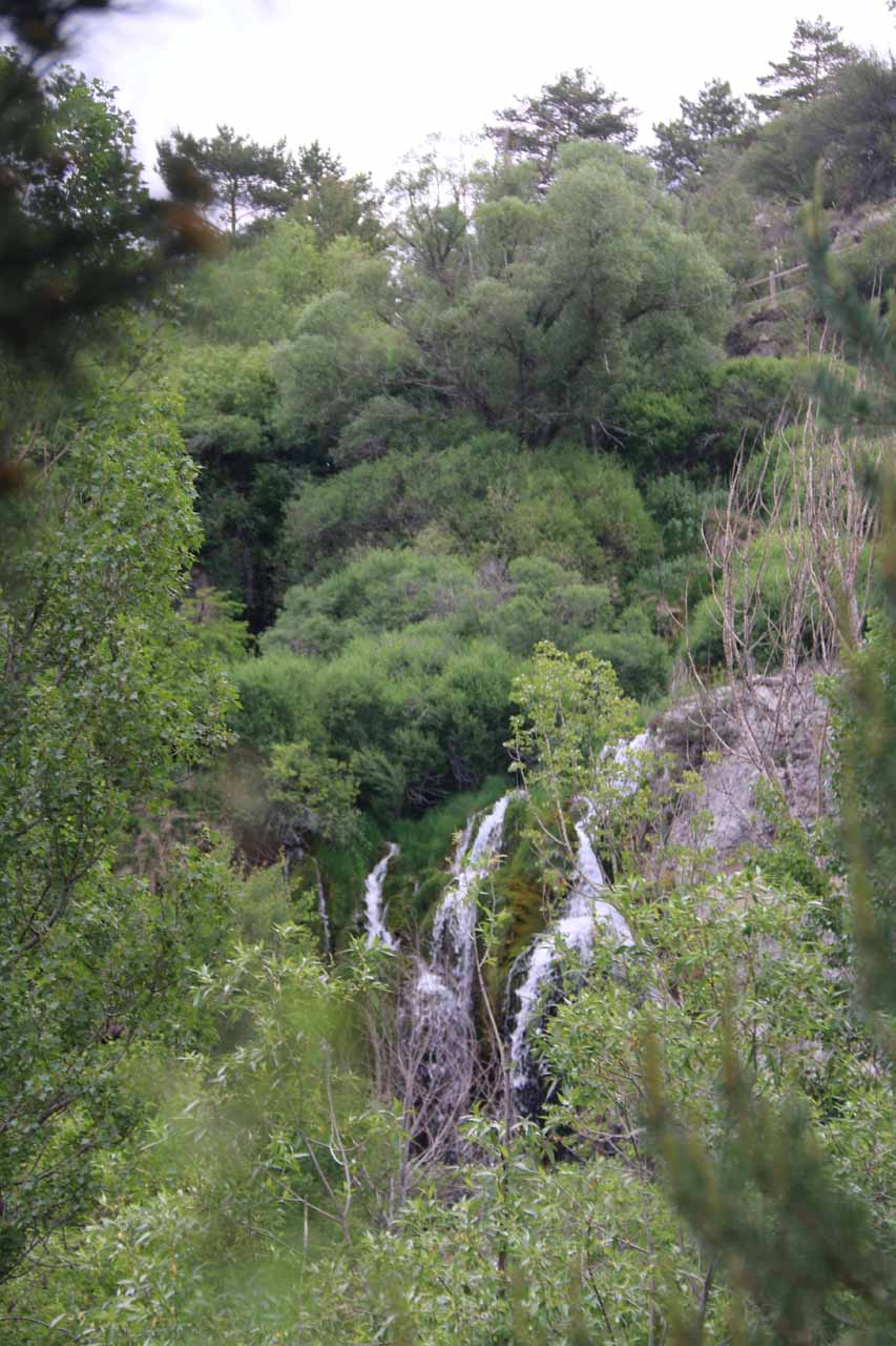 Our last look at the Cascada del Molino between trees as we made our way back to the trailhead