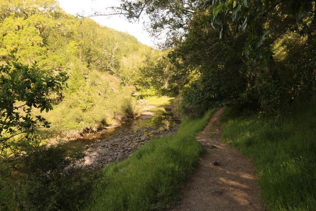 Cascade_Falls_011_04192019 - Following the so-called High Water Trail alongside San Anselmo Creek en route to Cascade Falls