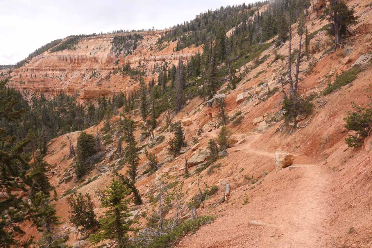 Beyond the lookout, the trail then descended into this scenic stretch of red cliffs where the trail narrowed as it clung to the slopes and dropoffs