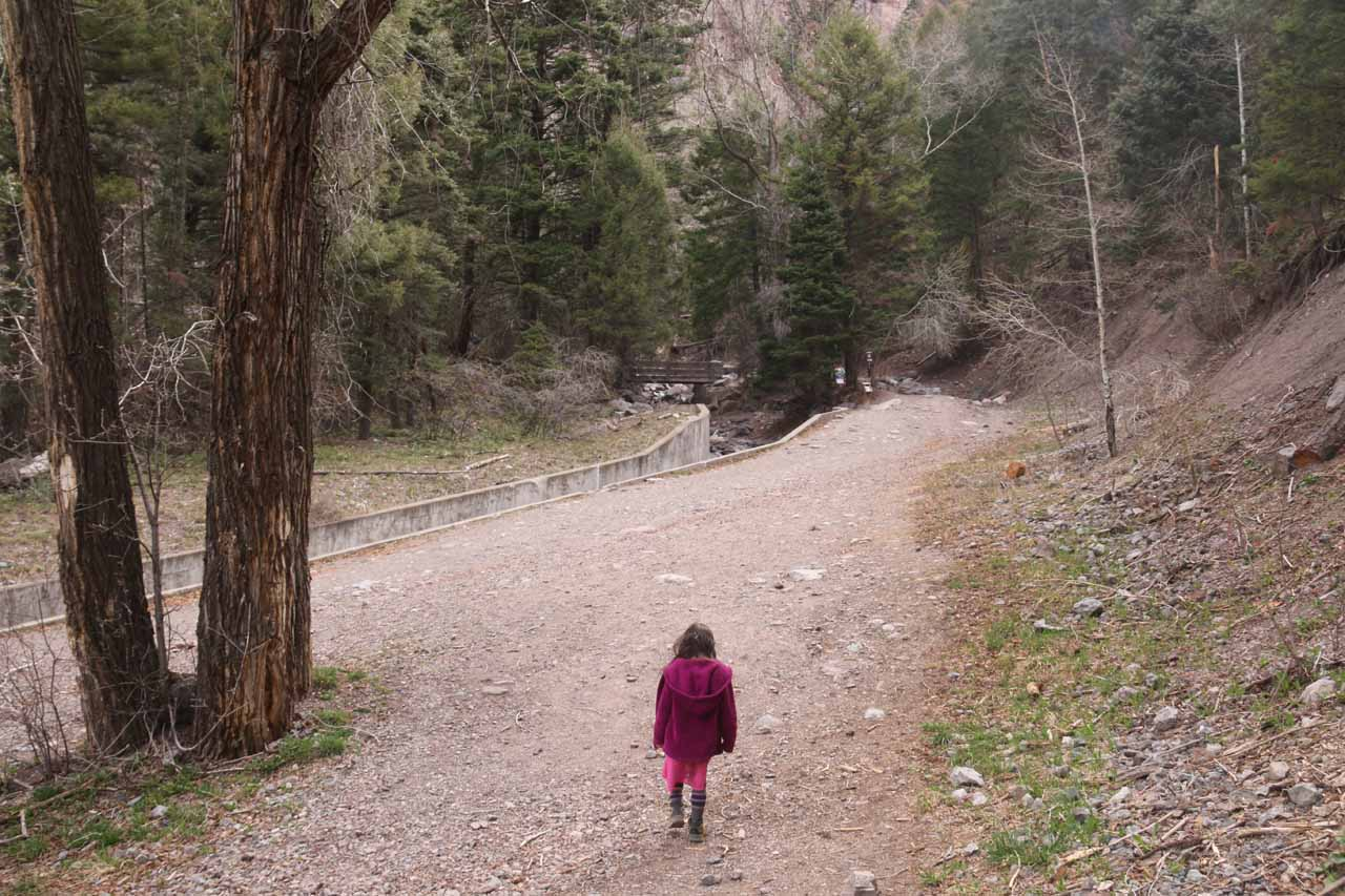 Tahia starting on the wide and open trail leading up to Cascade Falls