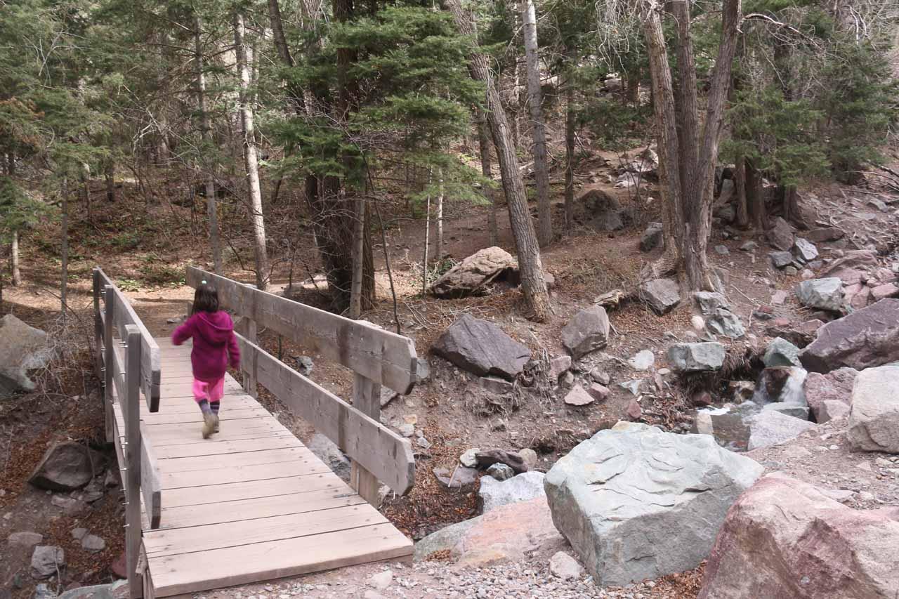 Tahia crossing the bridge over Cascade Creek
