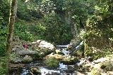 Cascade_de_Tendon_108_06202018 - Looking upstream towards the base of the Petite Cascade de Tendon where Tahia was busy trying to position herself on the rock for a nice chilling out spot