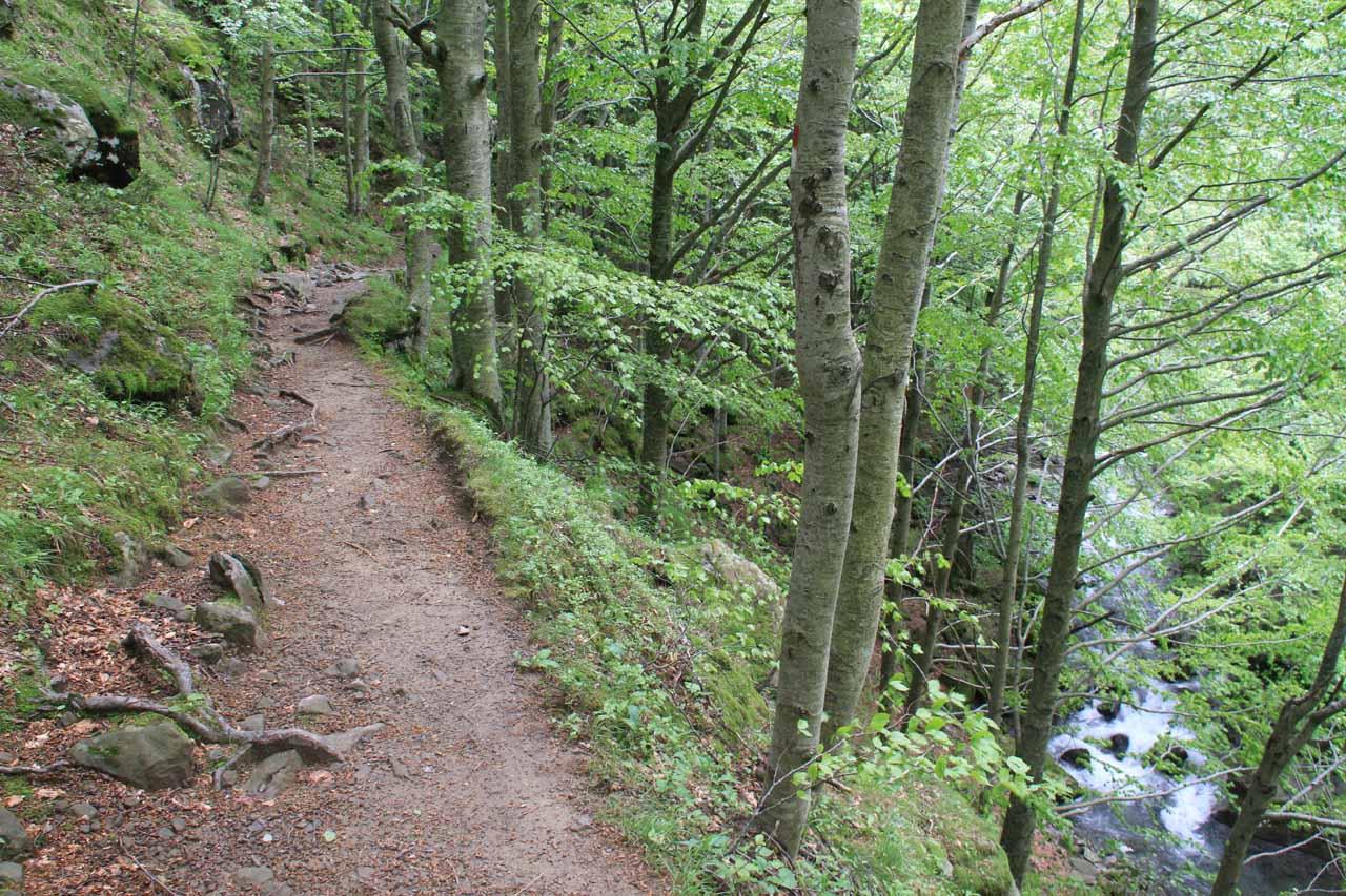 The narrow trail alongside the Dardagna