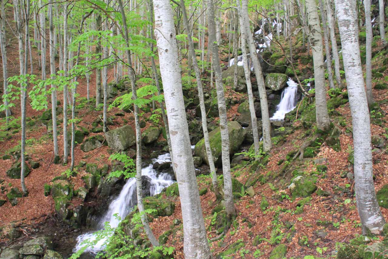 Descending alongside a cascade on a tributary of the Dardagna