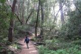 Castle_Rock_010_05192016 - Mom hiking the cool and shady trail to Castle Rock Falls late in the afternoon