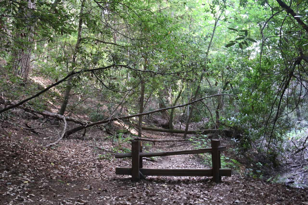 This fence appeared to be erected in a spot where there might have been another trail of use leading towards an alternate view of Castle Rock Falls, but we didn't push the issue any further