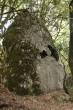 Castle_Rock_062_05192016 - An intriguing rock formation with tiny arches and holes