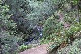 Cataract_Falls_035_04212019 - The Cataract Creek Trail starting to ascend alongside some of the waterfalls on Cataract Creek as seen early on in my hike in April 2019