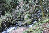 Cataract_Falls_075_04212019 - Approaching a footbridge over Cataract Creek on the hike to the Cataract Falls from the Cataract Creek Trailhead during my visit in April 2019