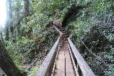 Cataract_Falls_081_04212019 - Looking along the footbridge spanning Cataract Creek during my visit in April 2019