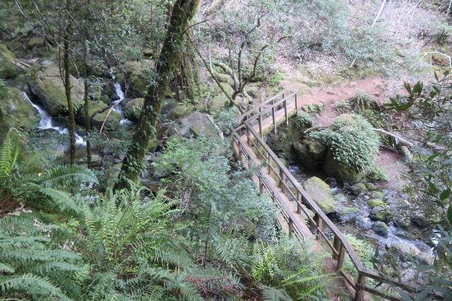 Cataract_Falls_083_04212019 - Looking back down at the footbridge spanning the Cataract Creek with some cascades of Cataract Falls tumbling around the trail