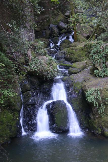 Cataract_Falls_088_04212019