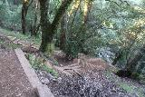 Cataract_Falls_135_04212019 - Just to give you an idea of how much more climbing I had to do in this stretch of the Cataract Creek, here's a look back towards Cataract Creek and the many steps and switchbacks alongside it as seen during my visit in April 2019