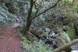 Cataract_Falls_194_04212019 - Looking back at the context of more hikers making their way further upstream alongside Cataract Creek as I was making my way back down during my visit in April 2019