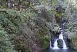 Cataract_Falls_199_04212019