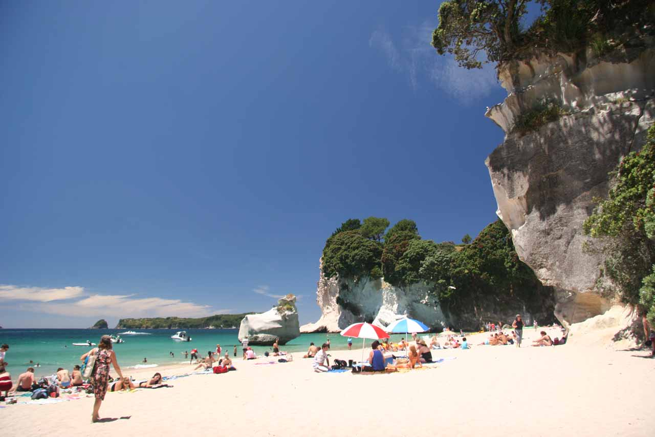The Cathedral Cove seemed to have grown immensely in popularity over the years, and I guess with beaches like this, it's understandable why this is the case