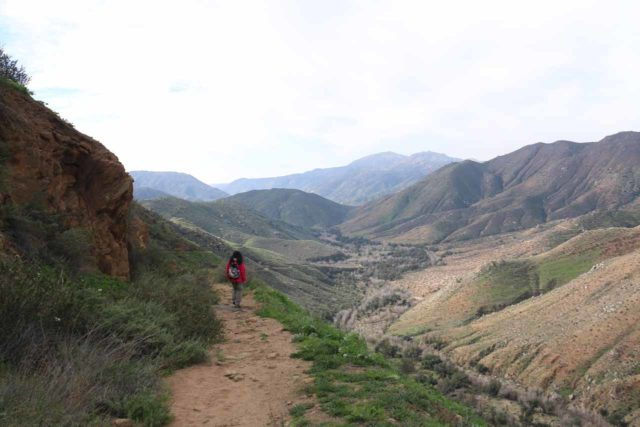 Cedar_Creek_Falls_069_01232016 - Descending on the Saddleback Trail towards the San Diego River basin on the Cedar Creek Falls hike from the Julian side