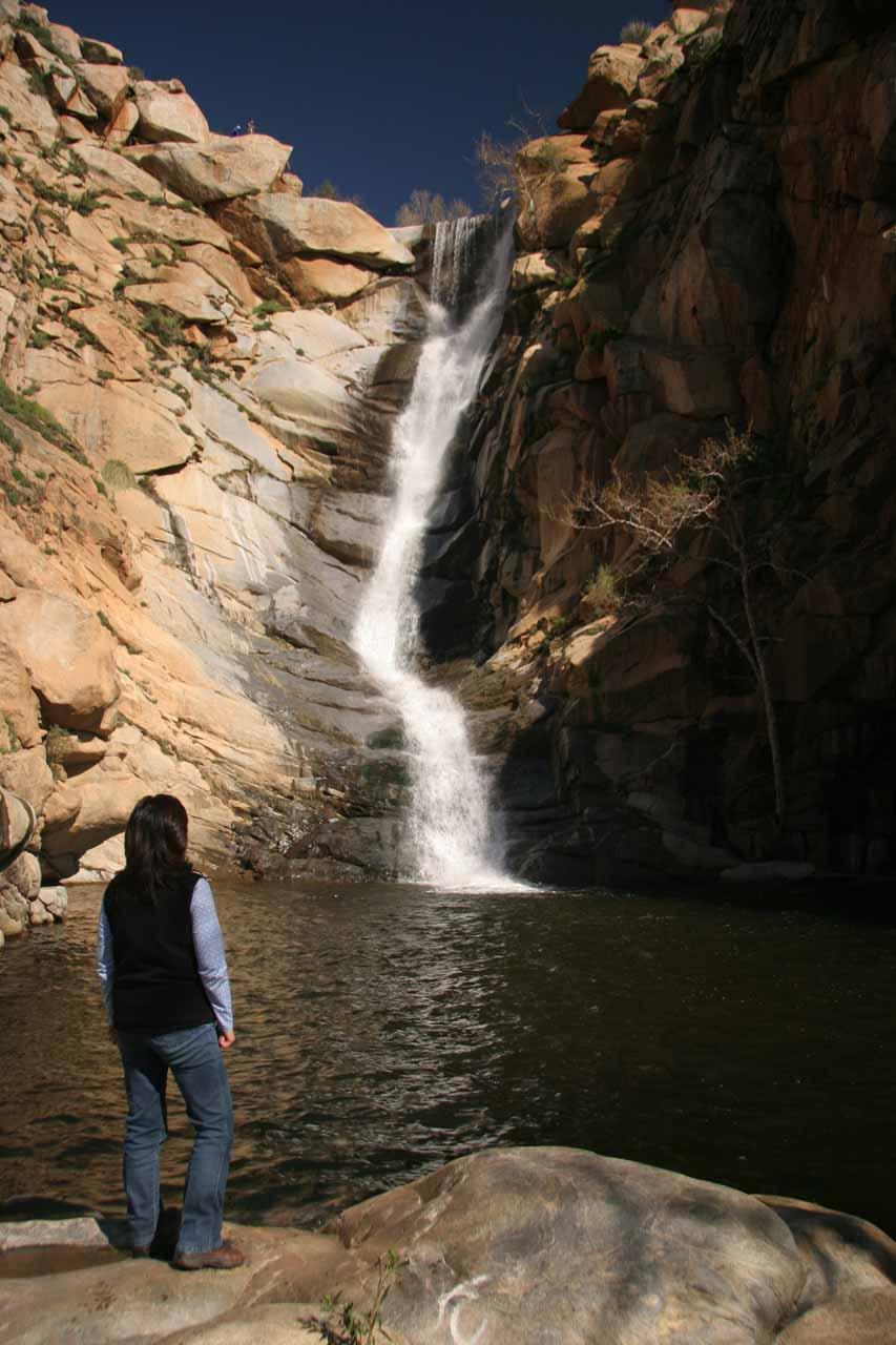 Cedar Creek Falls - World of Waterfalls