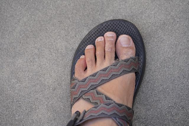 The simple open-foot design of the Chaco Z/1 Classic Sandal is both timeless and comfortable