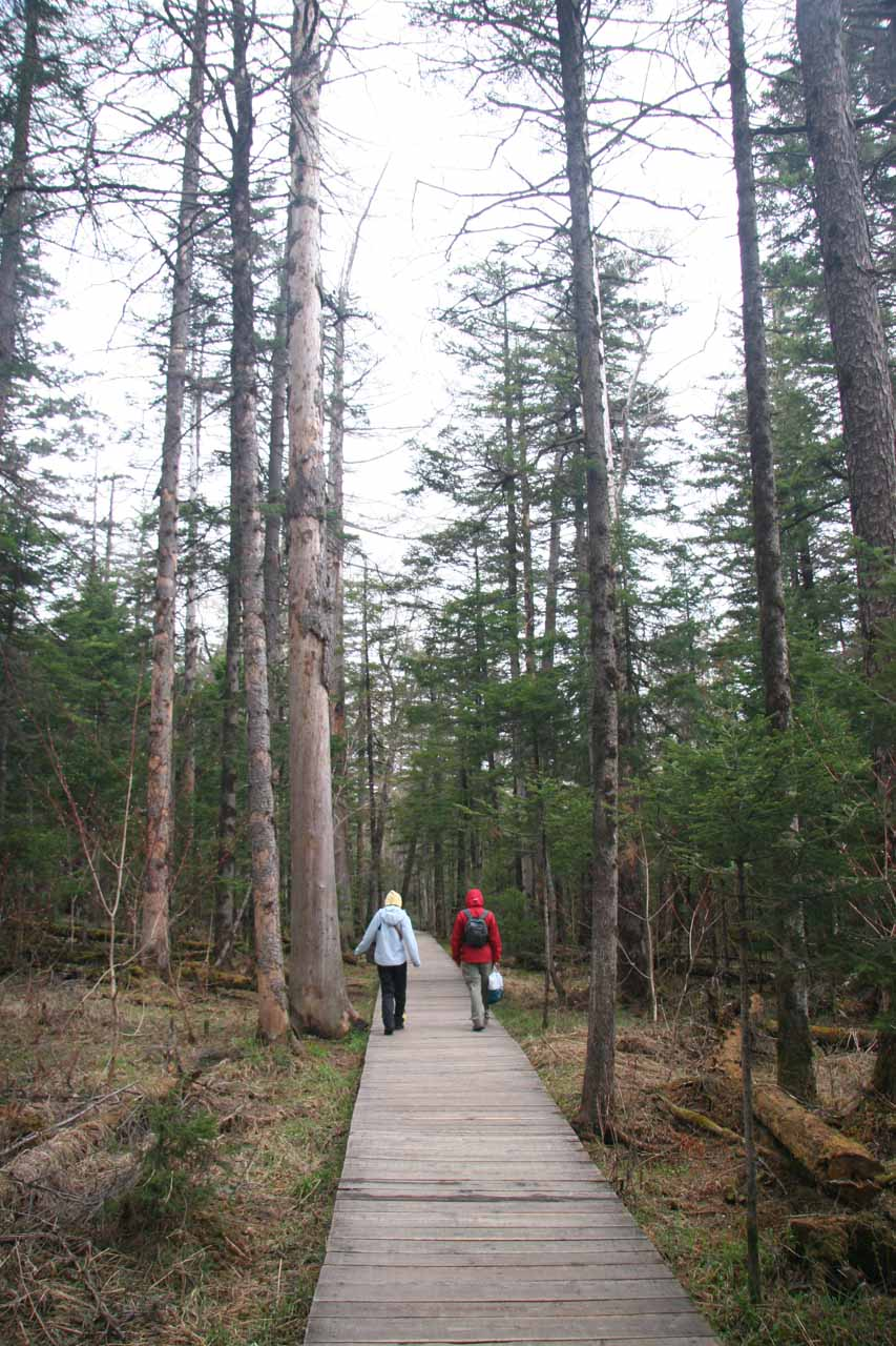 Julie and Susan walking on a boardwalk towards the Underground Forest