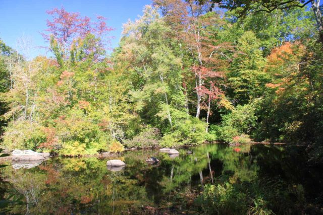 Chapman_Falls_041_09282013 - Looking across a reflective and calm part of the Eight Mile River on the alternate (more like main) trail to Chapman Falls