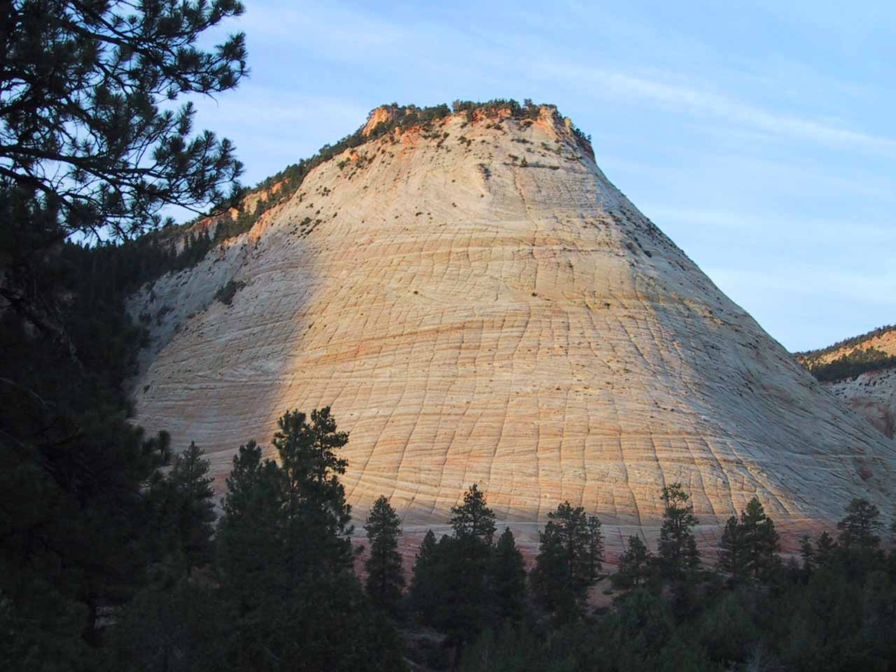 On our way out of Zion National Park's east entrance, we noticed this cool formation known as the Checkerboard Mesa, which was best seen early in the morning when it would get soft glow