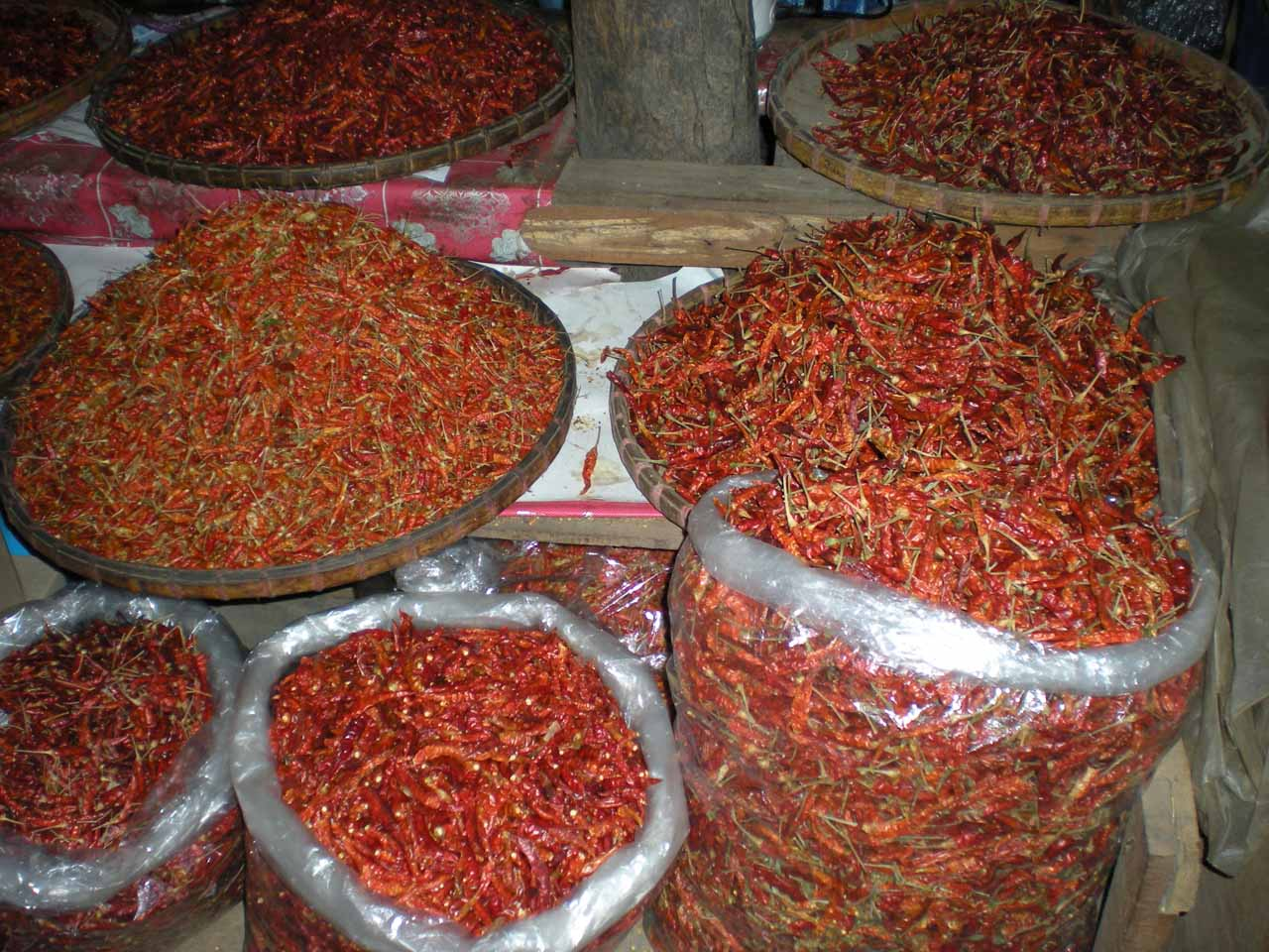 Colorful yet fiery hot chilis at the Mae Malai Market