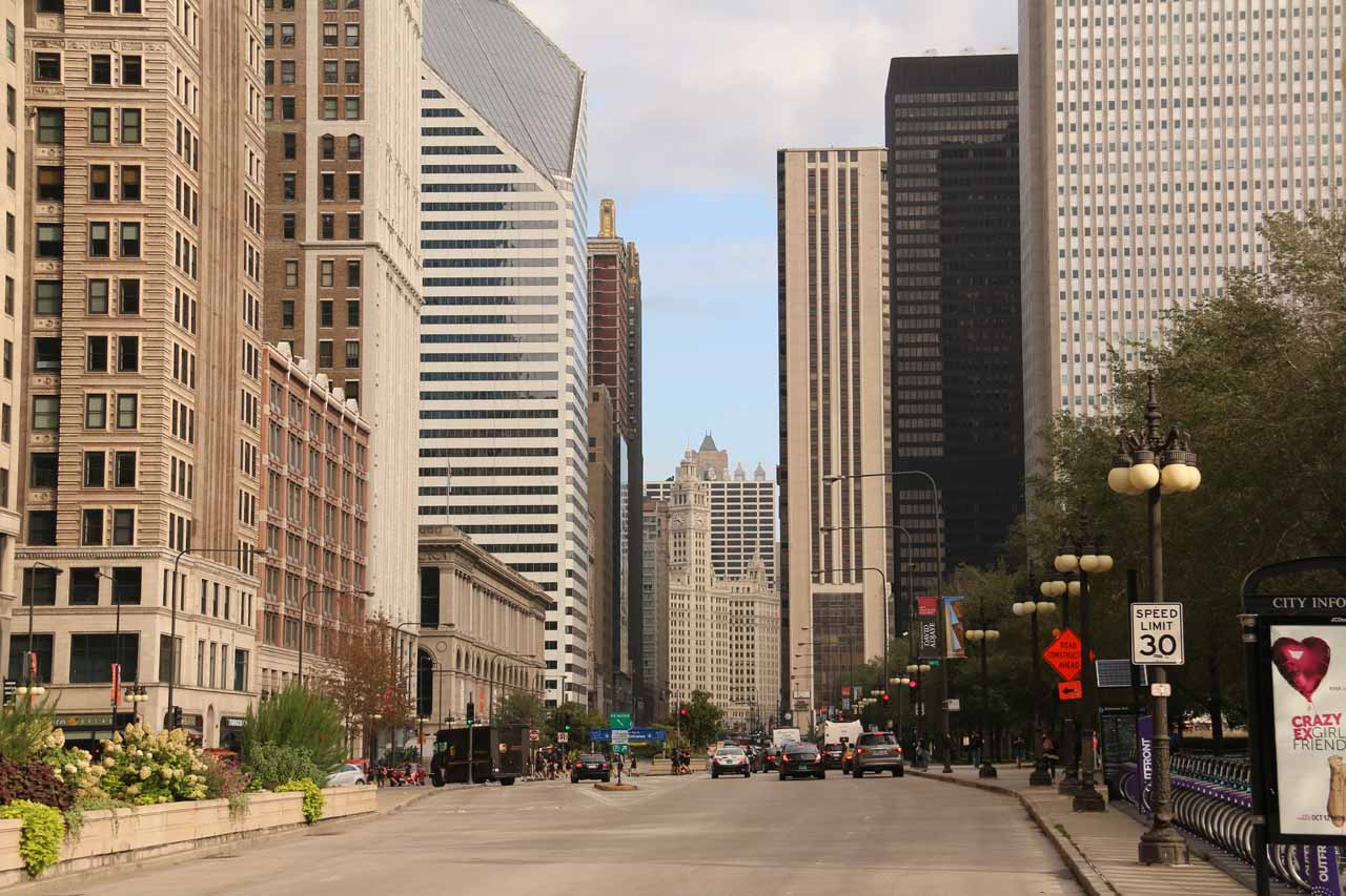 Looking down the street right in front of the Millenium Park