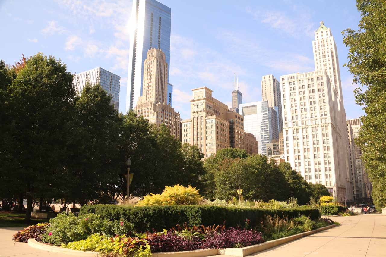 An attractive garden fronting tall skyscrapers at Millenium Park