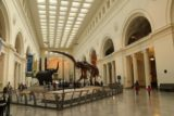 Chicago_753_10082015 - The interior of the Field Museum