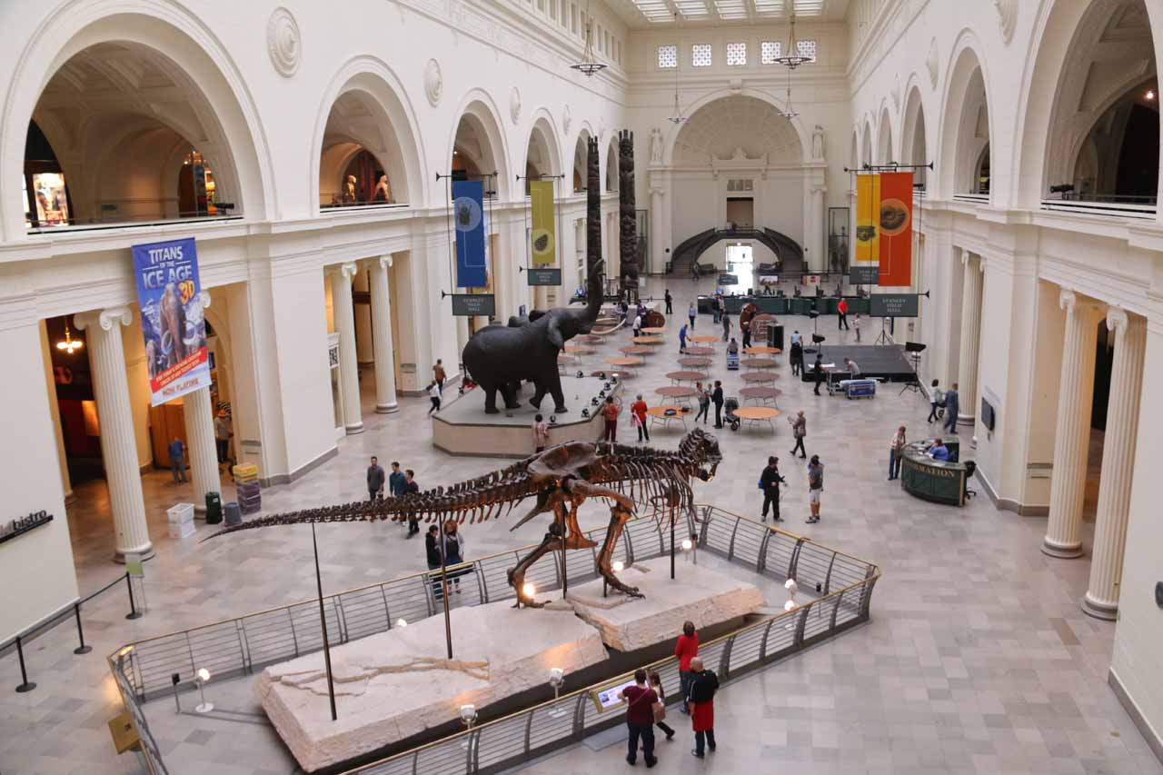 Looking down at the main floor from the second floor of the Field Museum